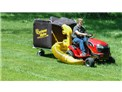 Use this large leaf vacuum on your large lawn too
